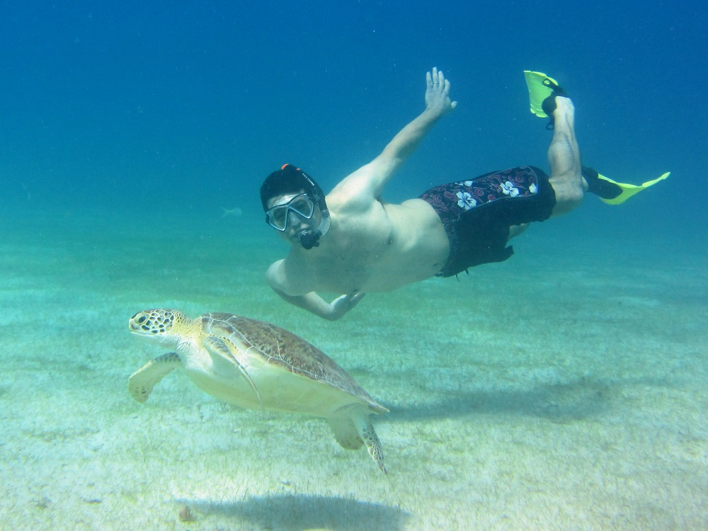 George Swimming With Turtle