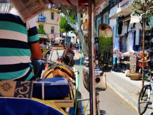 Turkey - Istanbul - Princess Islands - Carriage Ride