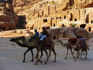 jordan-camels-walking-along-petra