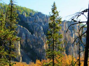russia-yakutsk-lena-pillars-through-trees