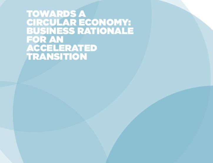 thumbnail of Ellen_MacArthur_Foundation_2015_Towards_a_circular_economy