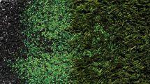 thumbnail of Ecopneus_2016_Ecopneus_nella_green_economy_