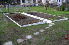 zelenjavni-vrt-04841