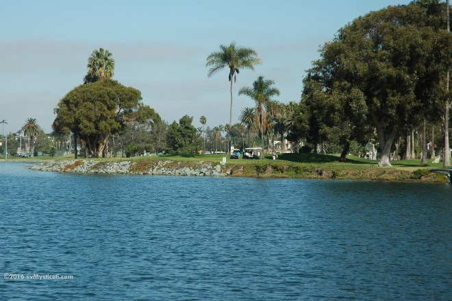 Golfers in the sunshine under palm trees, as seen from Mysticeti at anchor in San Diego Bay. We are a long way from home.