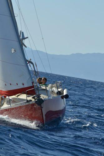 Nala First Sails