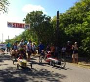 Hopetown Box cart Derby