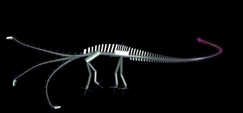 Diplodocus carnegii, DinoMorph computer model , showing neutral neck posture, and limits of flexibility.  From Stevens (2002:fig. 6a).  [Note that Stevens's more recent models show a slightly higher neck due to its leaving the torso at a less steep angle.]