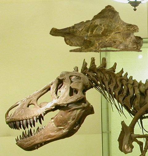 T. rex's neck is pathetic