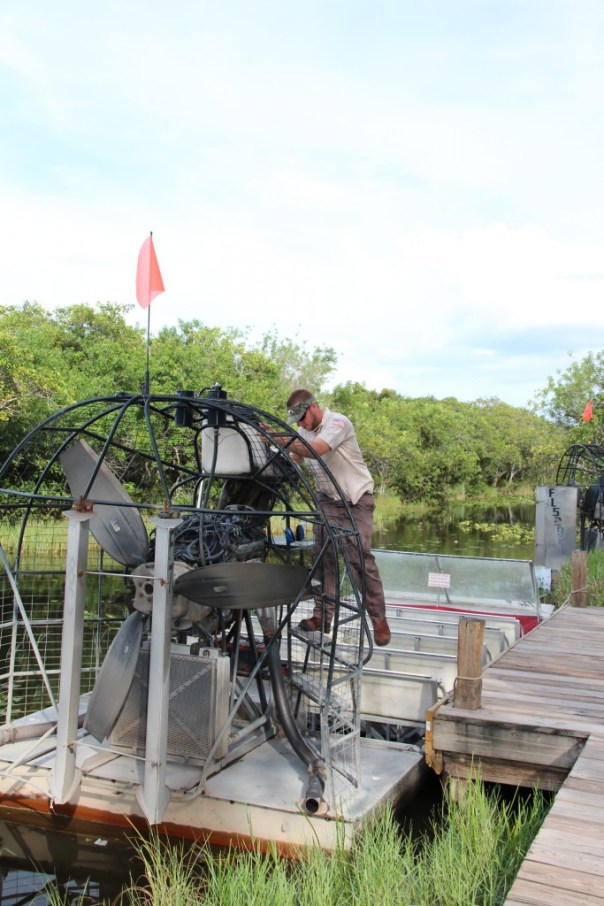 everglades air boat (5)