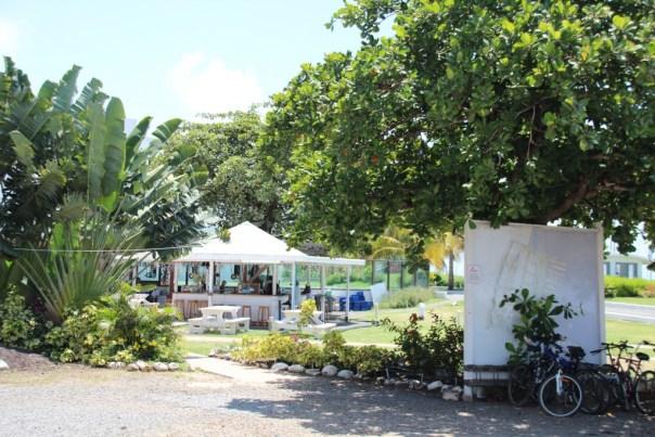 Prickly Bay Grenada (1)