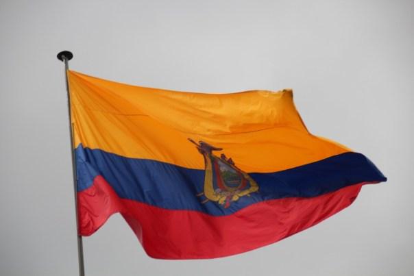 Behalve het logo is de vlag identiek aan deze van Colombia