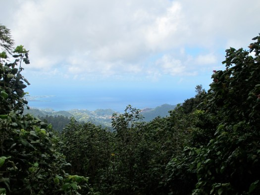 The view from the top of Grenada