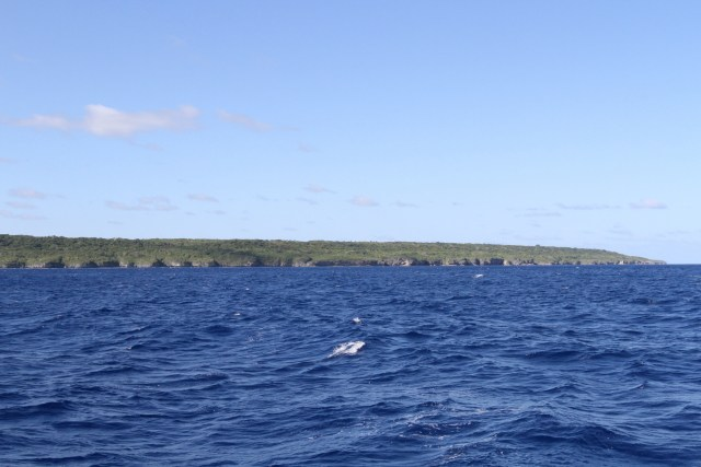 Land Ho! The long low island of Niue