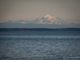 Mt Baker to the North