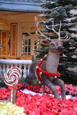 Bellagio 014 Reindeer