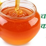 शहद के फायदे / Health Benefits of Honey in Hindi