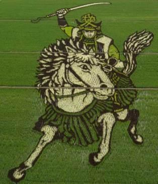 japan-rice-crop-art-1