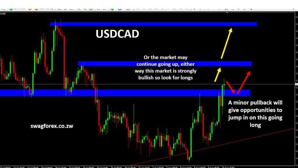USDCAD Forex Signals