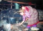 Somewhere in Kullu-Parvati valley of Himachal Pradesh