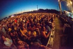 crowd9