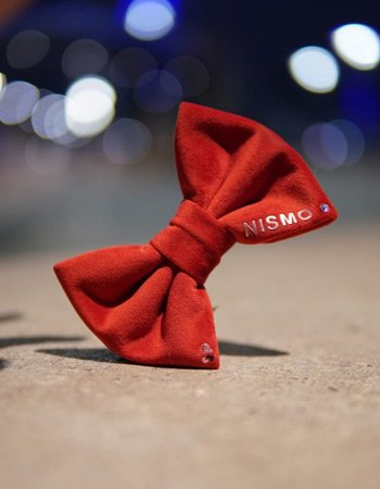 Custom red dog bow made from luxury soft velvet. It also has the dogs name and Swarovski Crystal on it