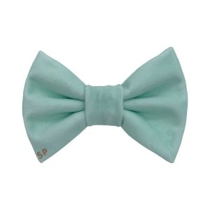 Light green dog bow tie shows luxury velvet at its best. This dog bow tie is perfect for all occasions being designer