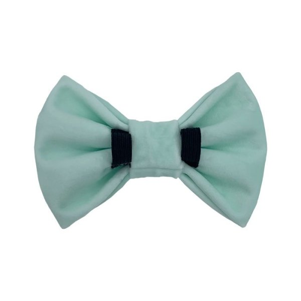 Light green dog bow tie back side shows 2 elastic loops to pull the dog collar through