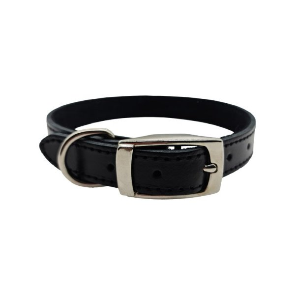Black leather dog collar with silver hardware showing a little bit of reflection off the leather and the matte black suede backing