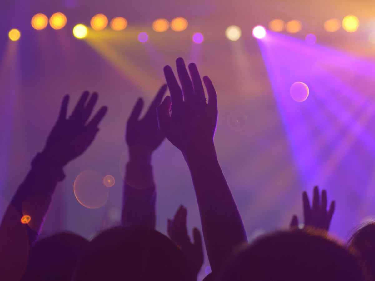group of people in a concert