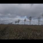 Screen Shot 2015-03-01 at 17.24.49