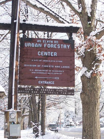 Urban Foresty Center