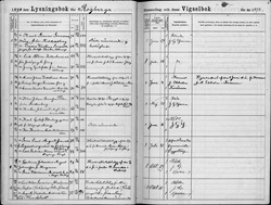 Carl and Emma - Marriage Record - 01 29 1898 - Rogberga