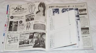 Megami MAGAZINE March 2015 Article 15
