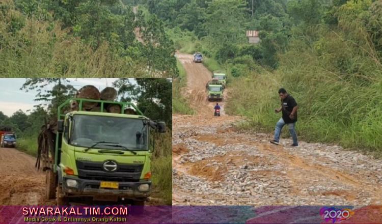 Imbas Corona, Akses Trans Kalimantan Rusak Parah