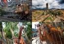 1. luty – Międzynarodowy Dzień bez Oleju Palmowego