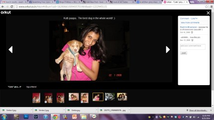 I had to get onto Orkut to get pictures of Simba. We had him in 2008.