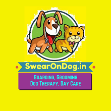 logo with startup line