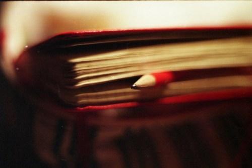 Diary by Magic Madzik