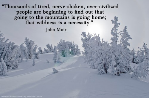 Winter Wonderland by Vincent Locke_John Muir quote