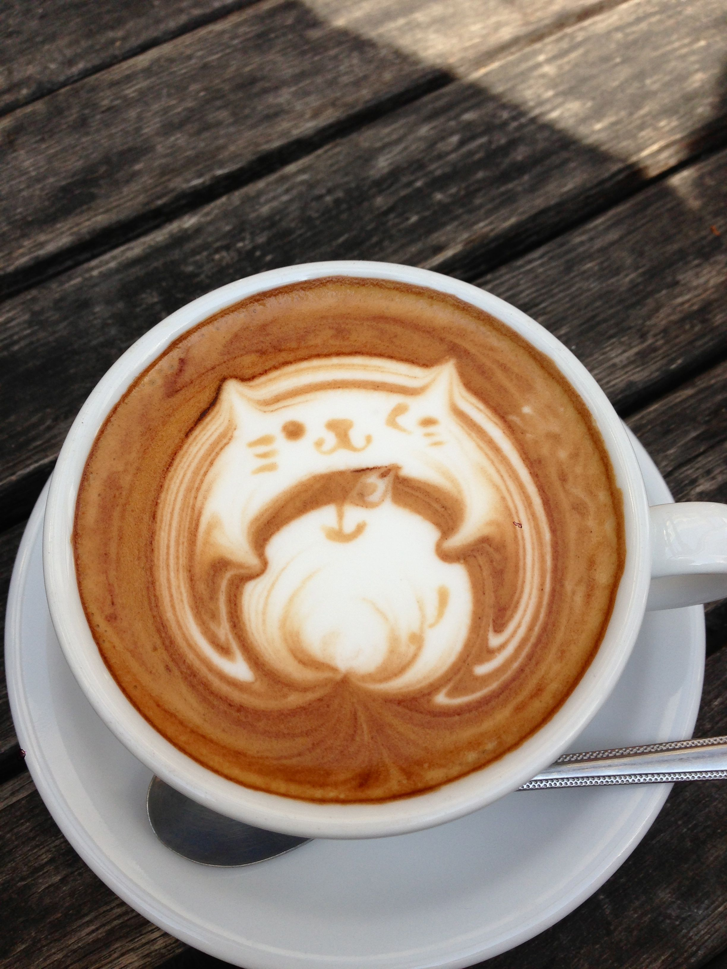 coffee-art cat with apple-mesubim