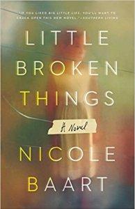 Little Broken Things A Novel by Nicole Baart