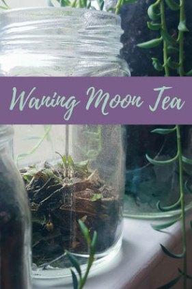 Waning Moon Tea