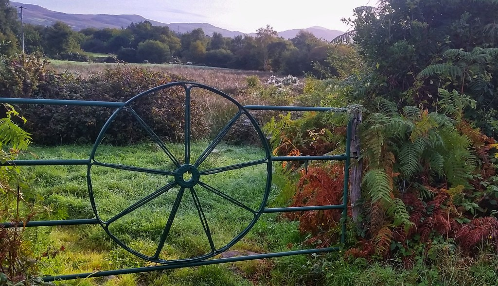 This pretty gate sat seemingly unused in the valley below MacGillycuddy's Reeks on the path from Glencar to Glenbeigh. Photo: Sara Weaver, Oct. 2017.