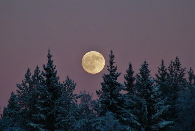 moon skivsjo