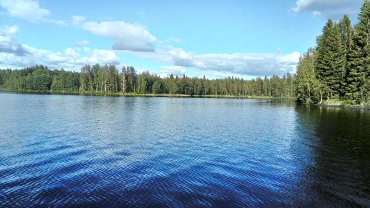 The view out on one of our many lakes with sweden fishing and birding.