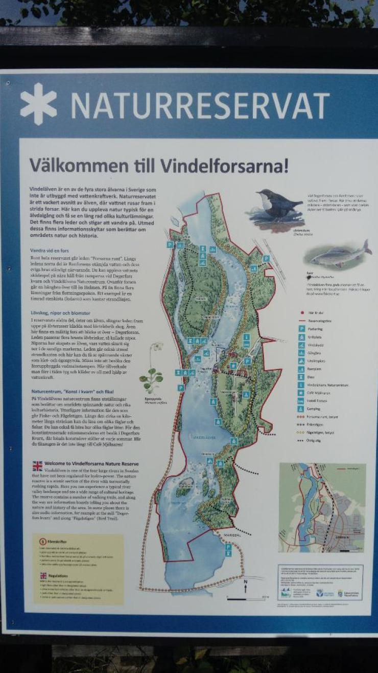 Vindeln Nature Reserve Board