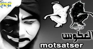 العكوس في اللغة السويدية  Motsatser