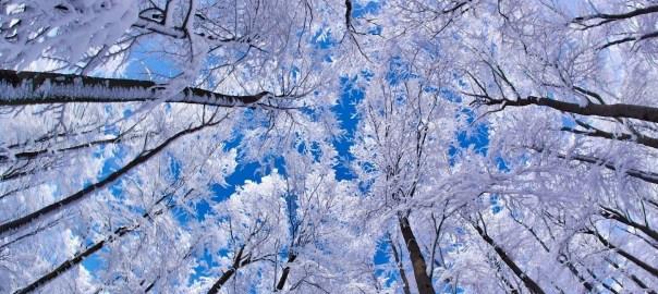 Winter Spring Practice Period