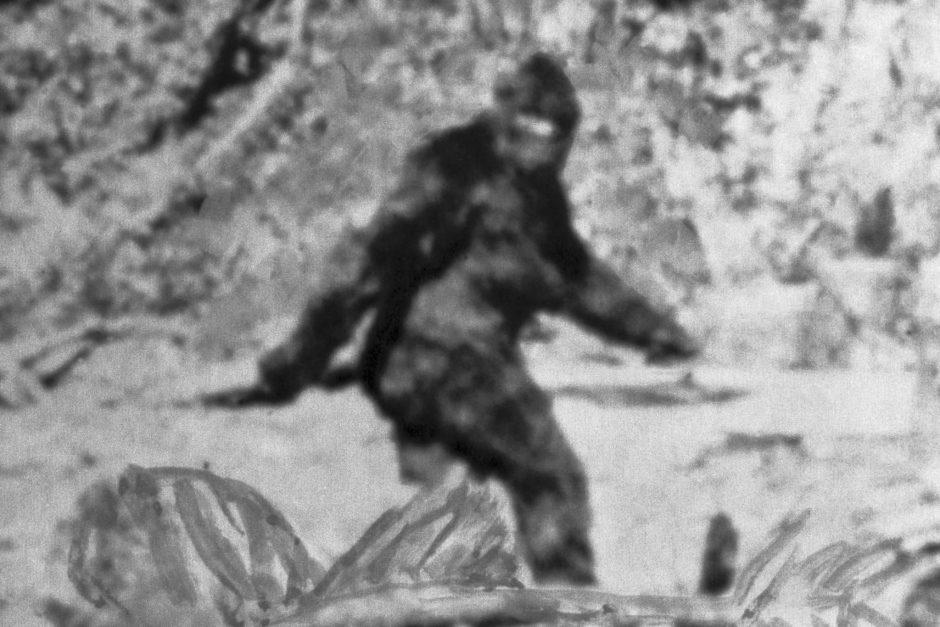 Bigfoot, c'est toi ?