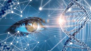 les biomarqueurs du vieillissement
